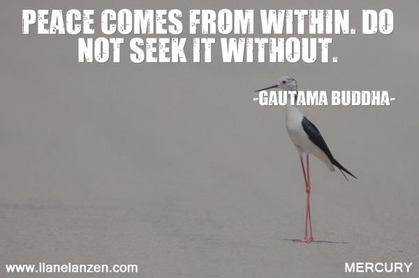 9.peace-comes-from-within-do-not-seek-it-without